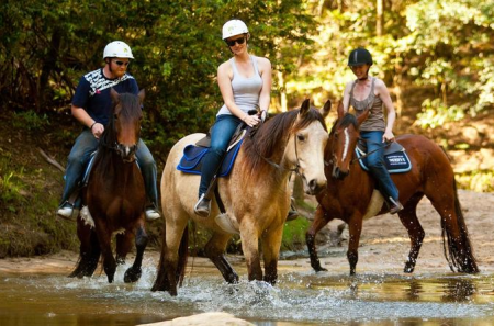 Horseback Riding (2 hours)